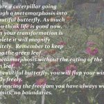 Your metamorphosis