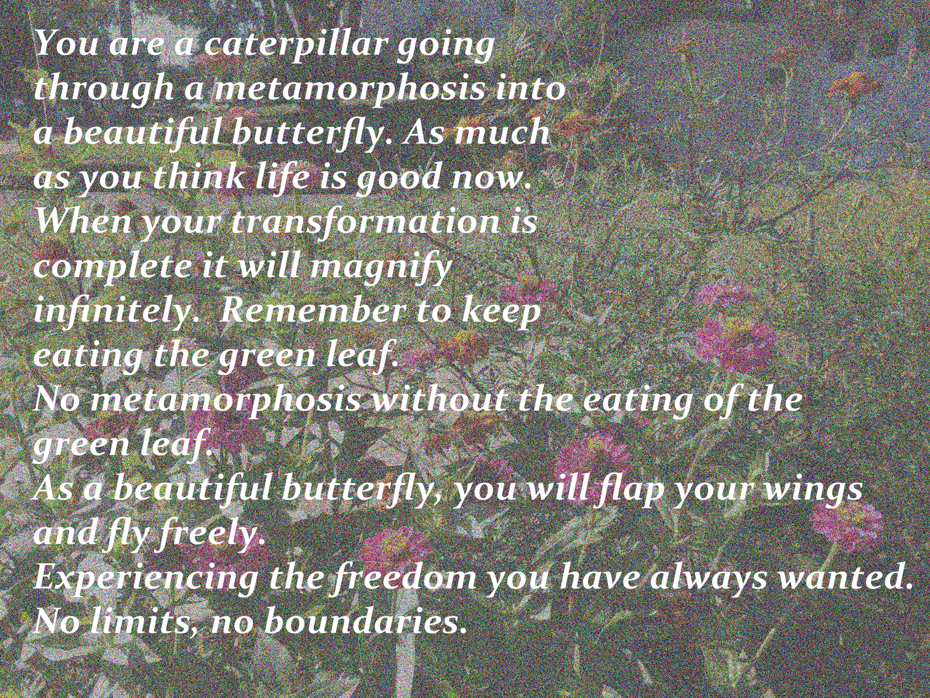 you are a caterpillar